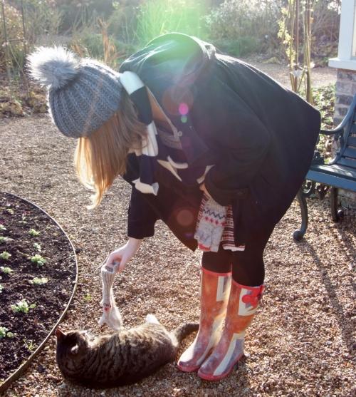 This kitten liked Jess' mitten.