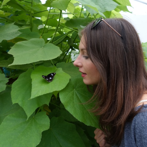 Niki and a Great Eggfly